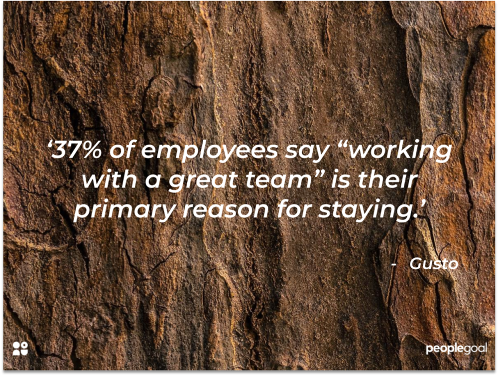 teambuilding for employee retention